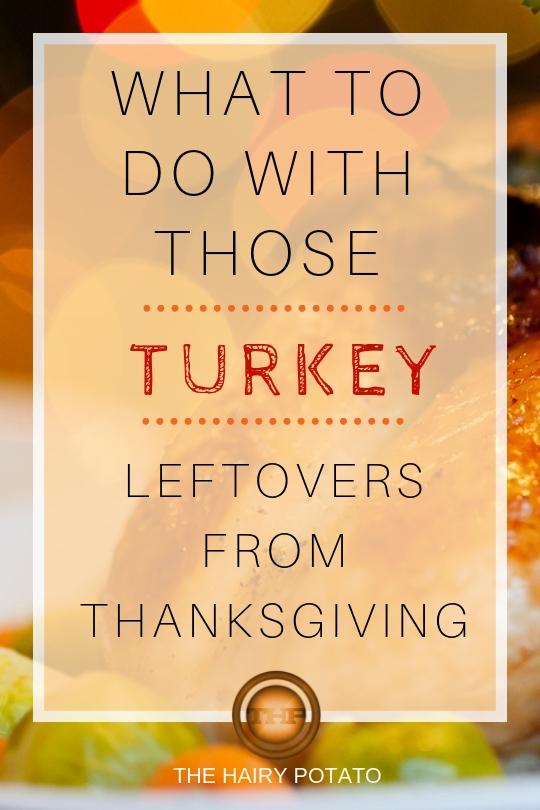 turkey leftovers pin