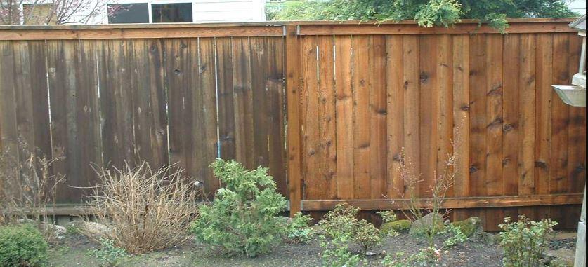 pressure wash fence